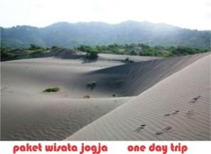 wisata jogja gumuk pasir
